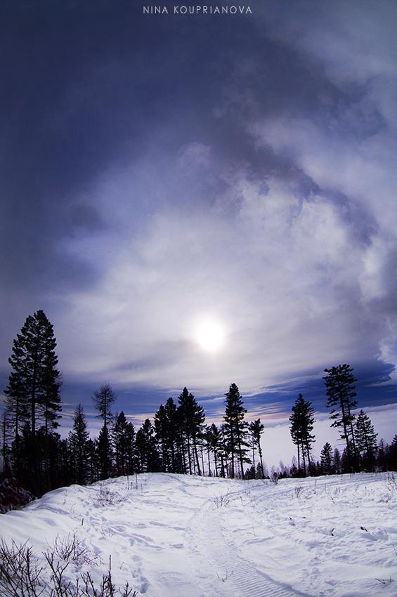 winter sun 850 px url.jpg