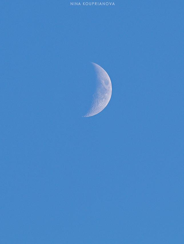 new moon dec 850 px url.jpg