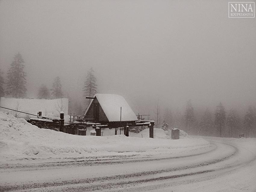 deep snow 4 850 px url.jpg