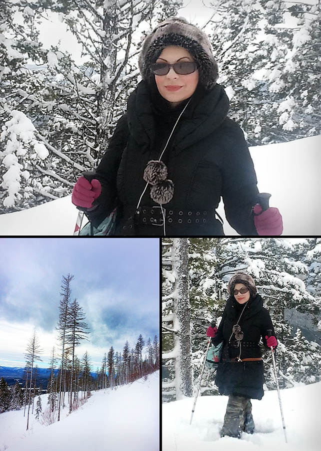 snow shoeing combined 900 px.jpg