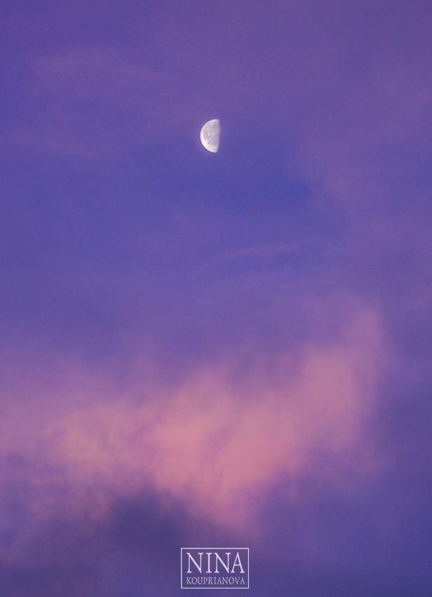 moon morning dec 24 b vertical 850 px url.jpg