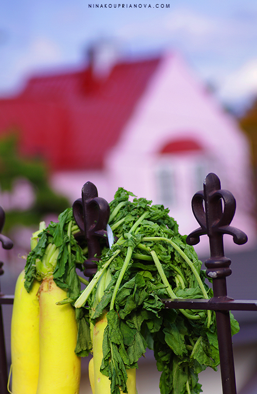hakodate in detail veggies 750 px with url.jpg