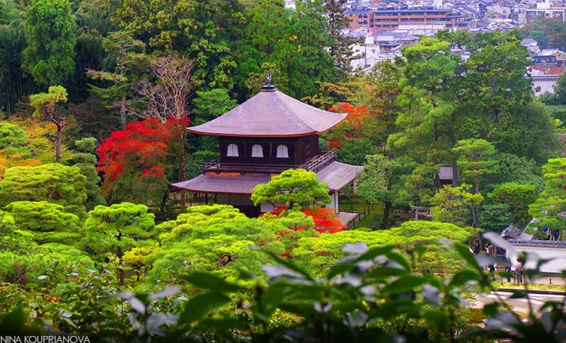 Kyoto rooftop v3 800 px url.jpg