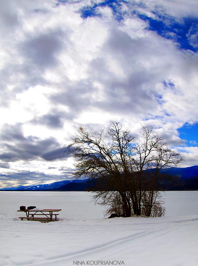 swan lake 850 px url.jpg