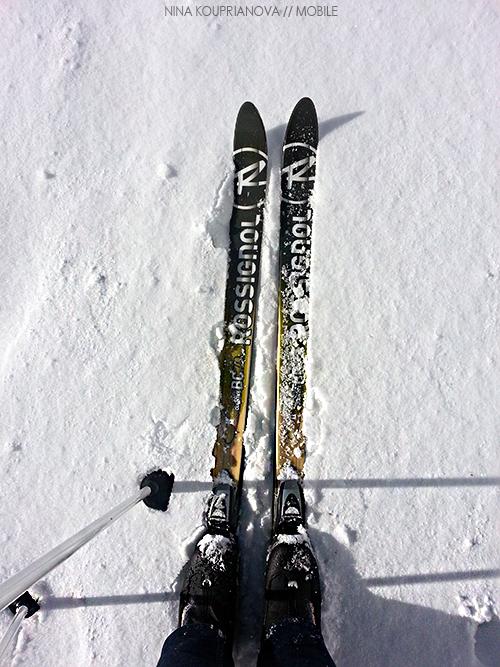 skis 500w px url.jpg