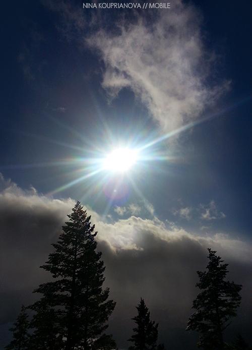 ski sun 500w px url.jpg