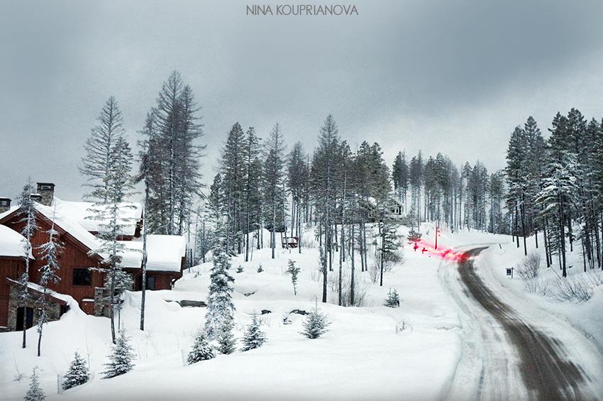 gray winter landscape 1 850 px url.jpg
