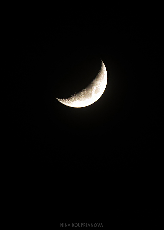 tokyo moon crescent 900 px u rl.jpg
