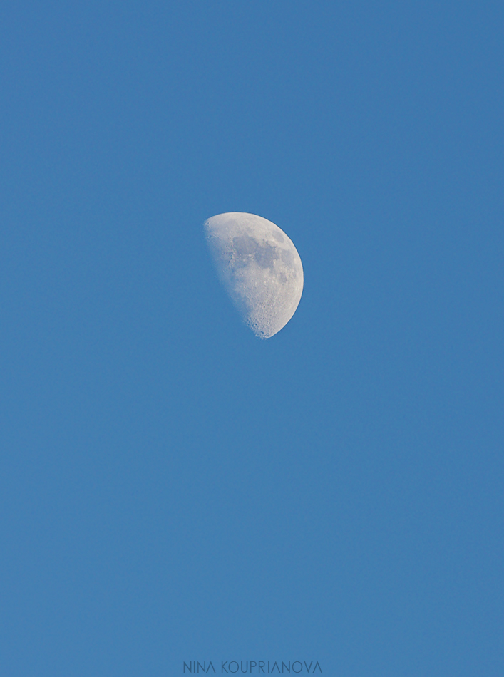 moon may 6 950 px url.jpg