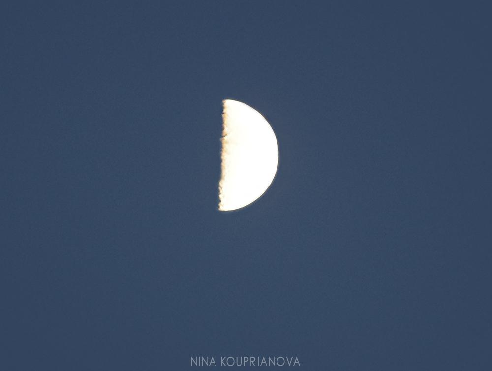 moon aug 3 c 1000 px.jpg