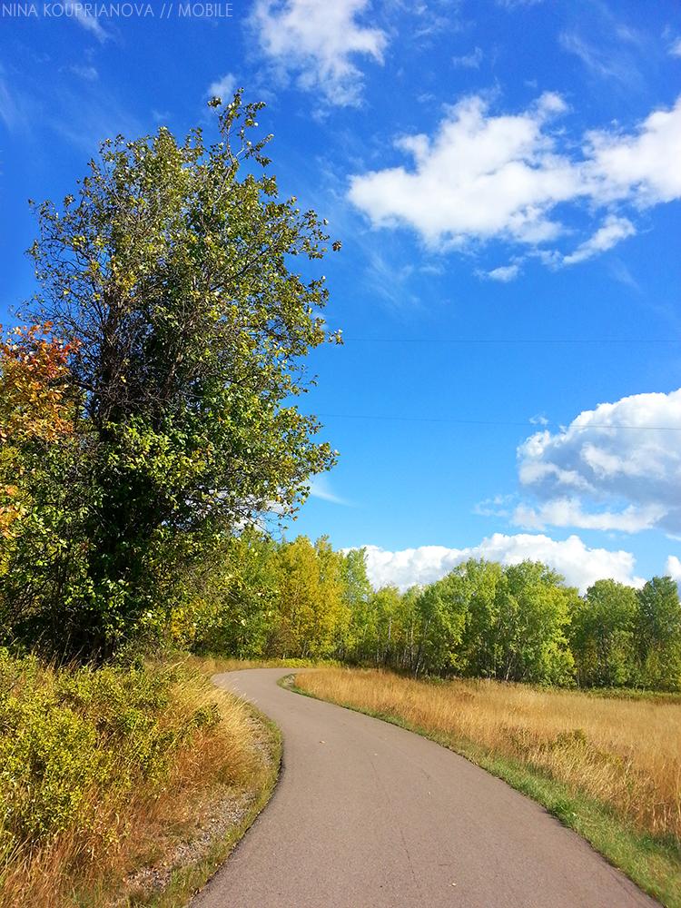 autumn walk town 1000 px.jpg