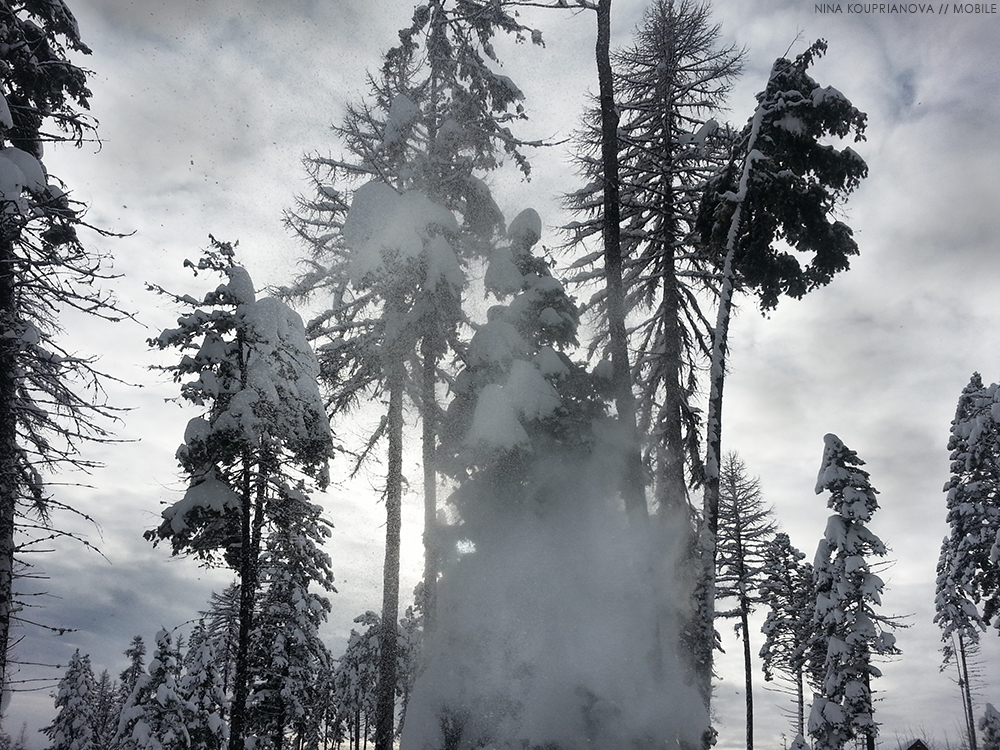snow fall 3 1000 px.jpg