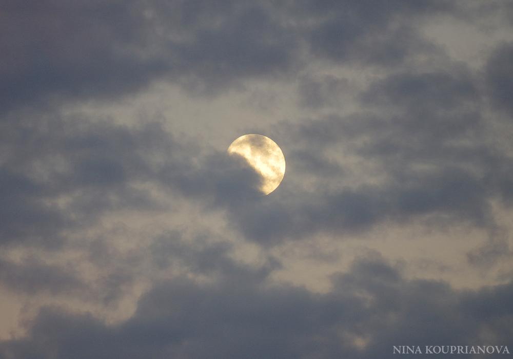 moon nov 23 b 1100 px.jpg