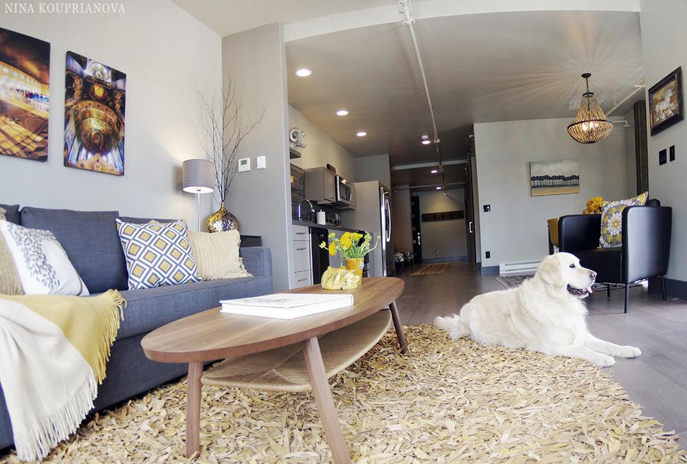 unit D living room 1 1200 nk.jpg