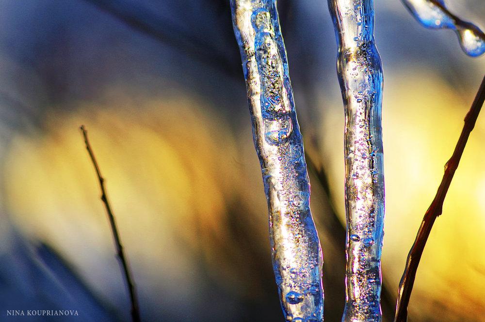 ice golden hour 3 1500px.jpg
