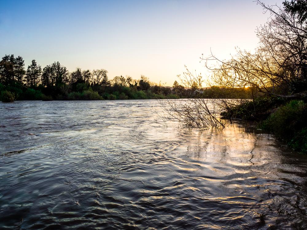 "Week 4: ""A River"""