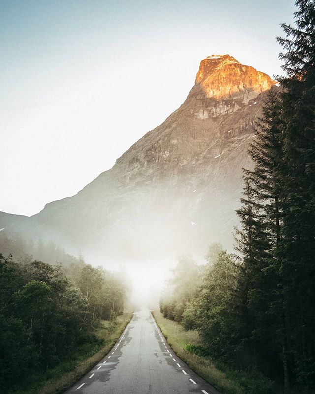 Дорога не иначе как к приключениям 🌲 … (где-то в Норвегии) . 🇬🇧 The road definitely leads to adventure. Norway. . #norway #road #natgeoru #vscorus #trip #norwaytrip #amazingview #vzcomood #forests #natgeowild #mist_vision #wildme #atmospheric #приключения #норвегия #поездка #дорога #горы #красивыйвид #впуть #путешествуем #вокругсвета #планета #путешественник #красивыеместа #путешественники #влесу #путешествуй