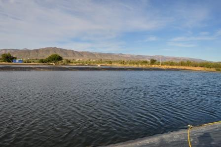 The pool at the sewage works, with the Swartberg mountains behind