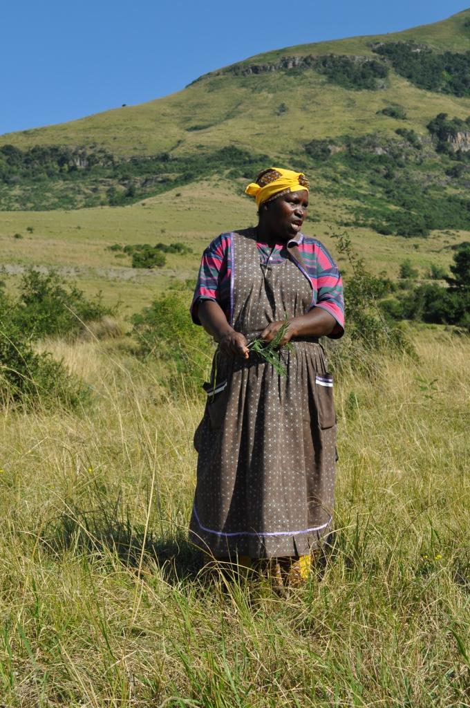 Mama Jack, who runs a yellowwood nursery