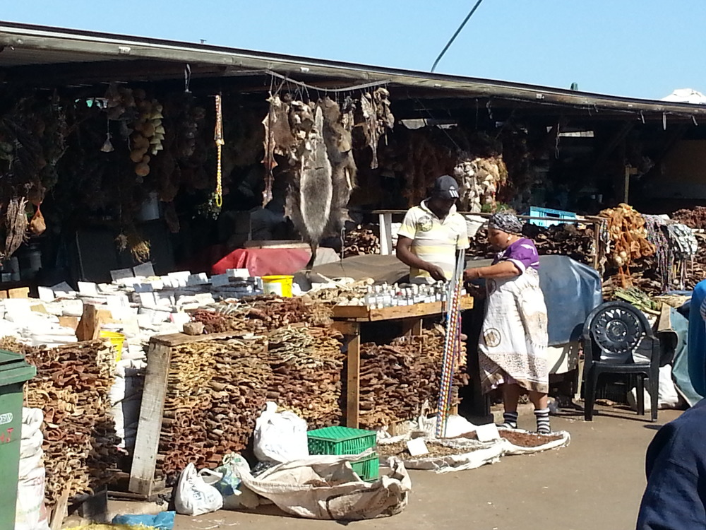 A muthi market street scene (and the second honey badger sighting of the day)