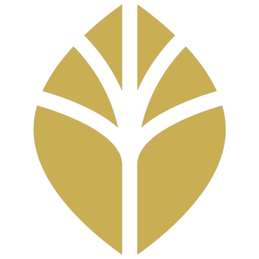 Seed to Oaks logo 500x.jpg