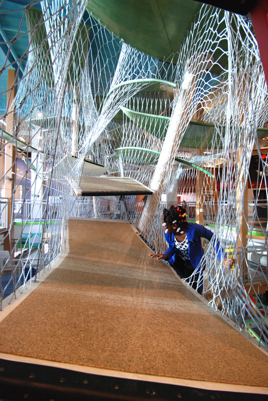 Luckey Climbers can be found in museums across the globe
