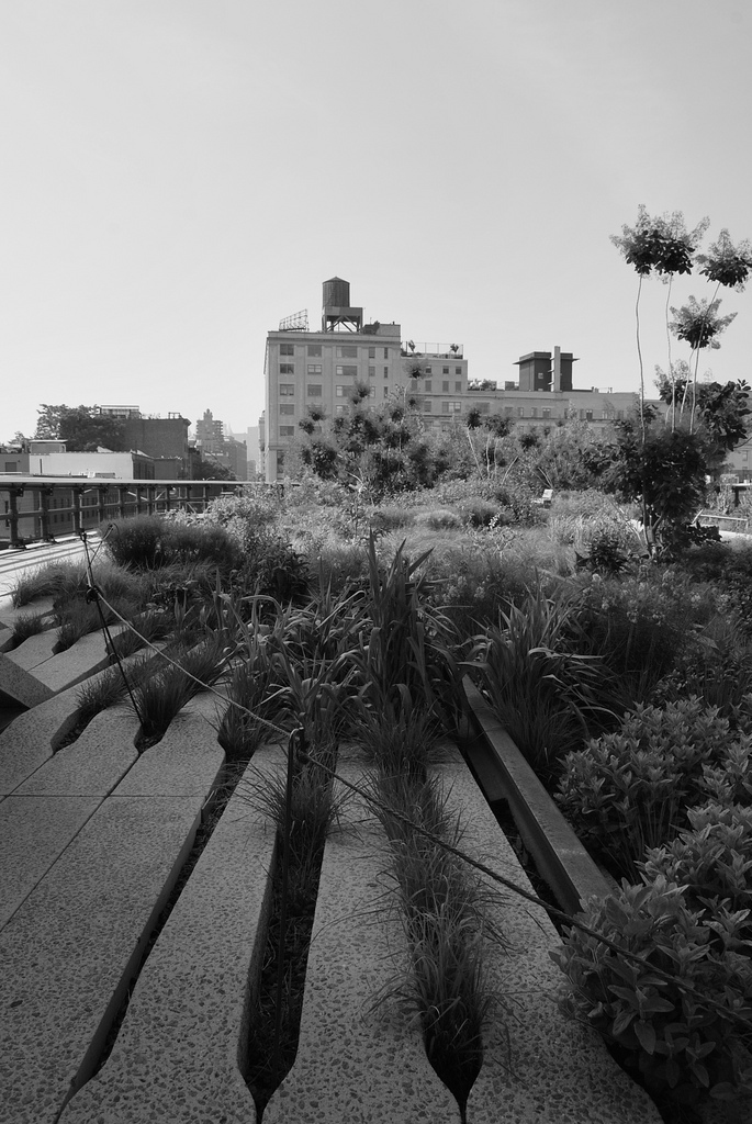 Highline_Manhattan_2011_1 NEW.jpg