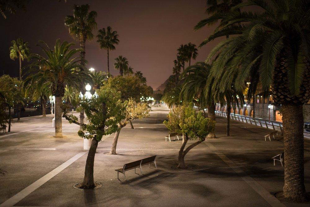 2017Feb14_Barcelona_1124.jpg