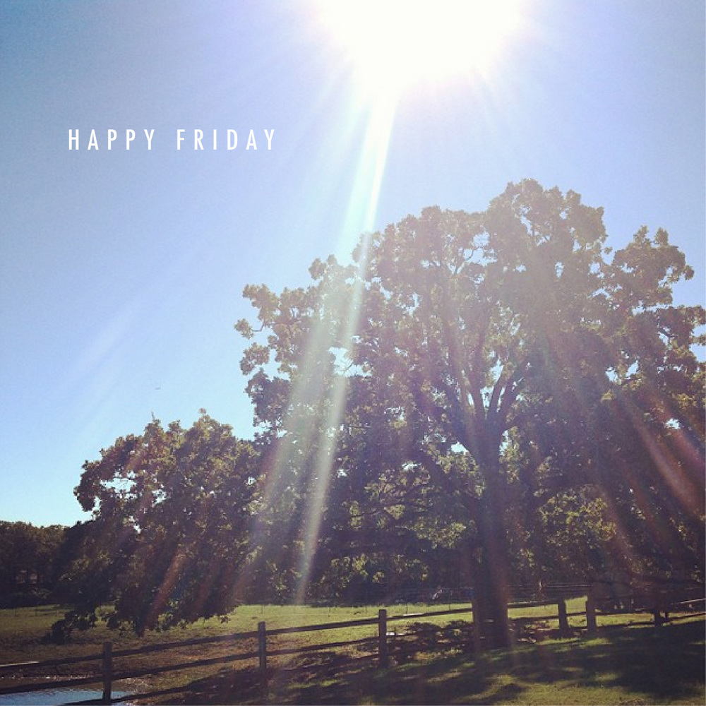 Happy Friday | That's Pretty Ace