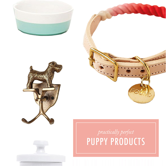 Puppy Products | That's Pretty Ace