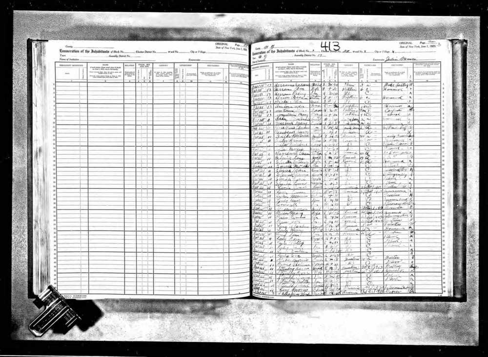 New York State Census 1925