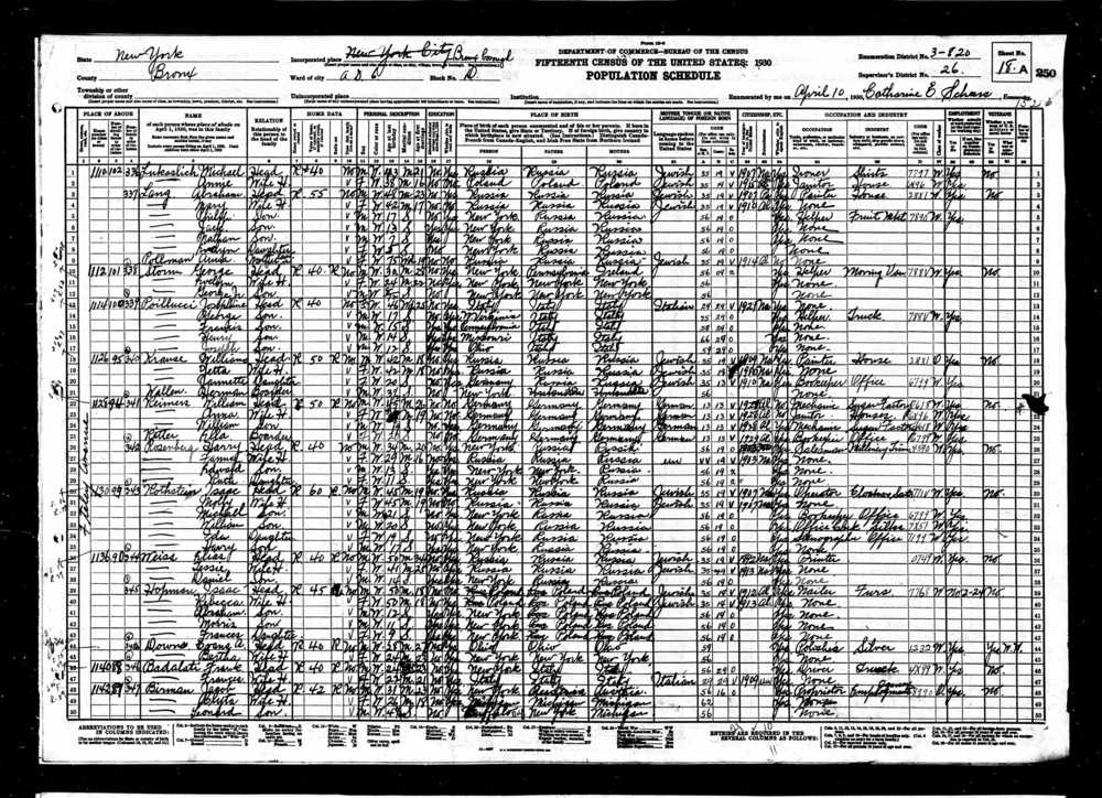 1930 US Federal Census