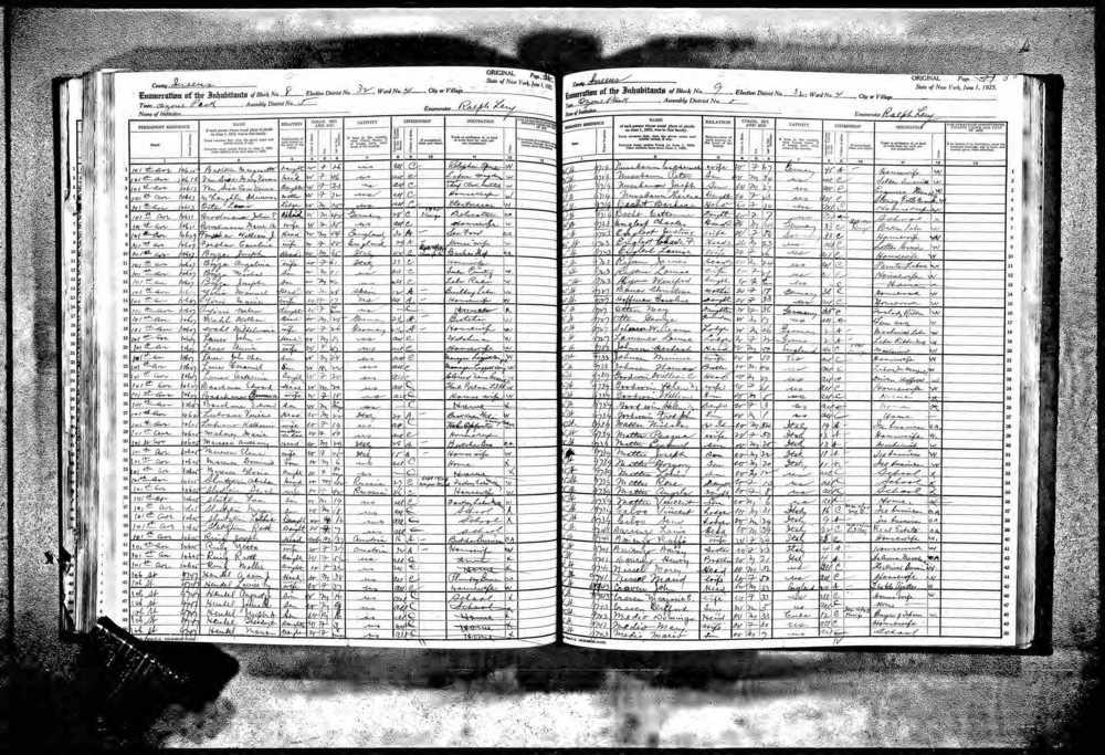 1925-ny-census.jpg