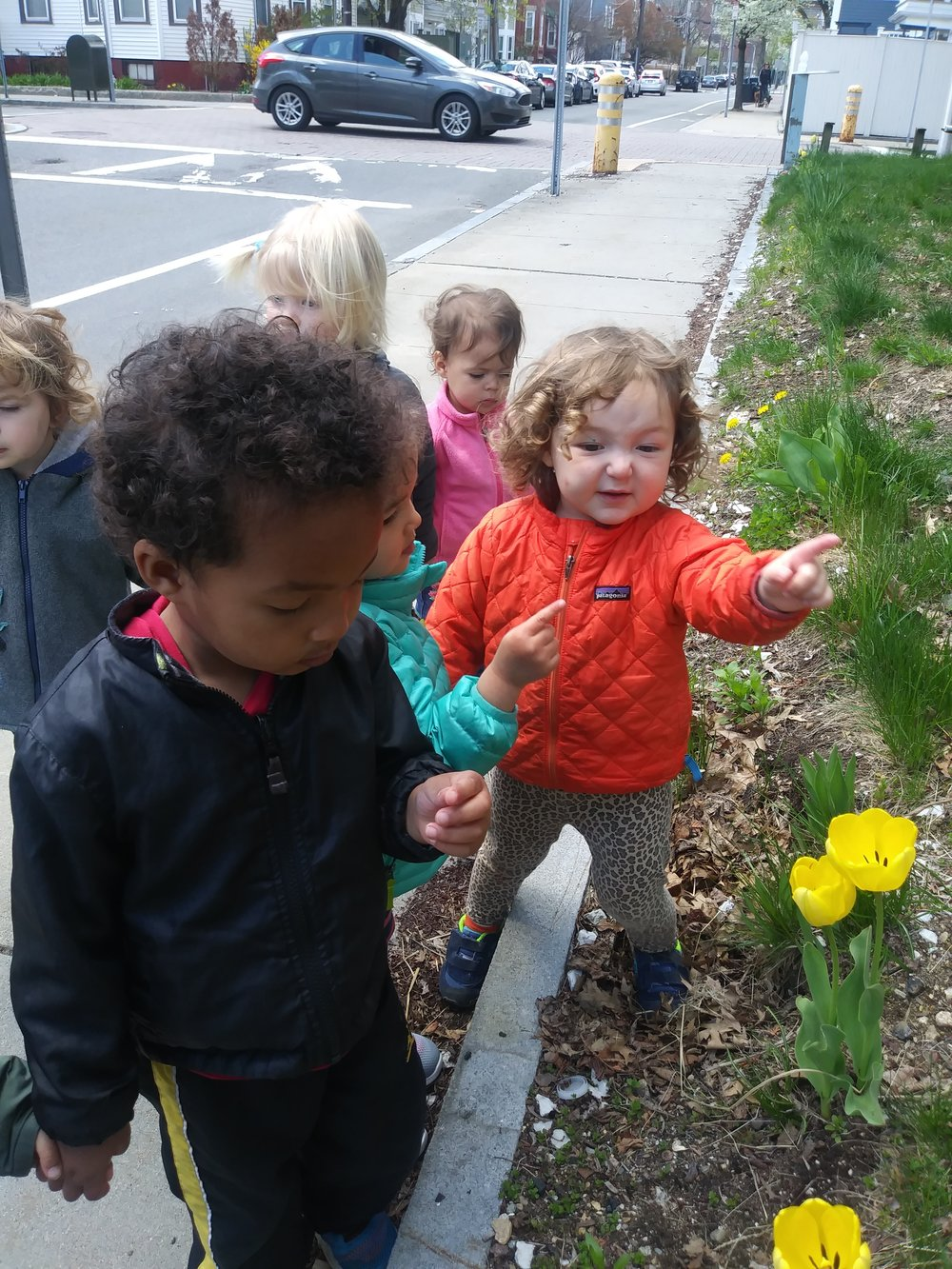 - Observing signs of spring in our community
