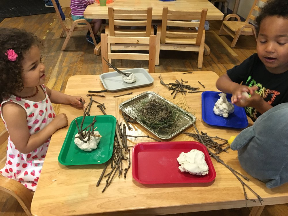 Using clay and natural materials to build bird nests -