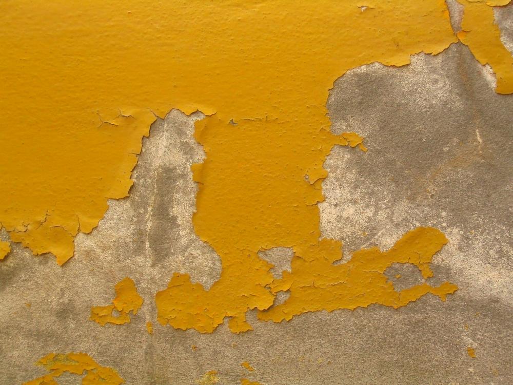 Image by  Elsa Delaplace  via  FreeImages.com