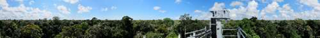 This is a panoramic view (360 degrees) from the top of a 148-foot observation tower at a study site in the Amazon forest near Santarém, Brazil. An instrument on the tower monitors atmospheric conditions and the solar radiation available for photosynthesis. Data are being used to help researchers better understand how photosynthesis in tropical forests responds to seasonal variations in climate. (Photo credit: Dennis Dye, courtesy U.S. Geological Survey, 2012)