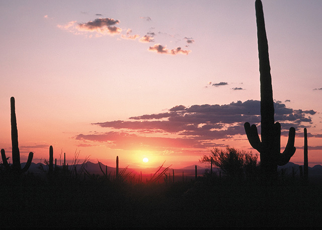 Sunset over the desert near Tucson, Arizona (photo by Tim McCabe, USDA Natural Resources Conservation Service, October 4, 2011).