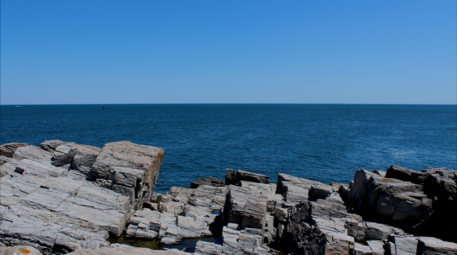 I snapped this photo on a recent trip to Portland Head Light.