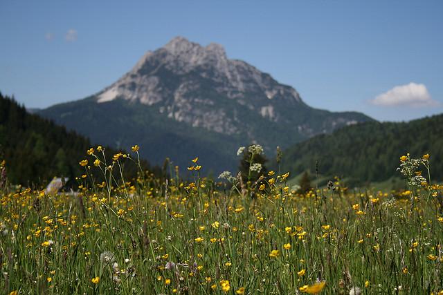 spring-mountain.jpg