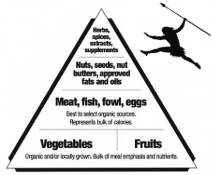 paleo-lifestyle-real-food-pyramid-2.jpg