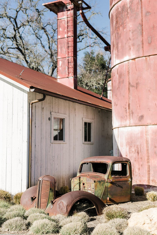 Anna Delores Photography_Halter Ranch 03.07.18-231.jpg