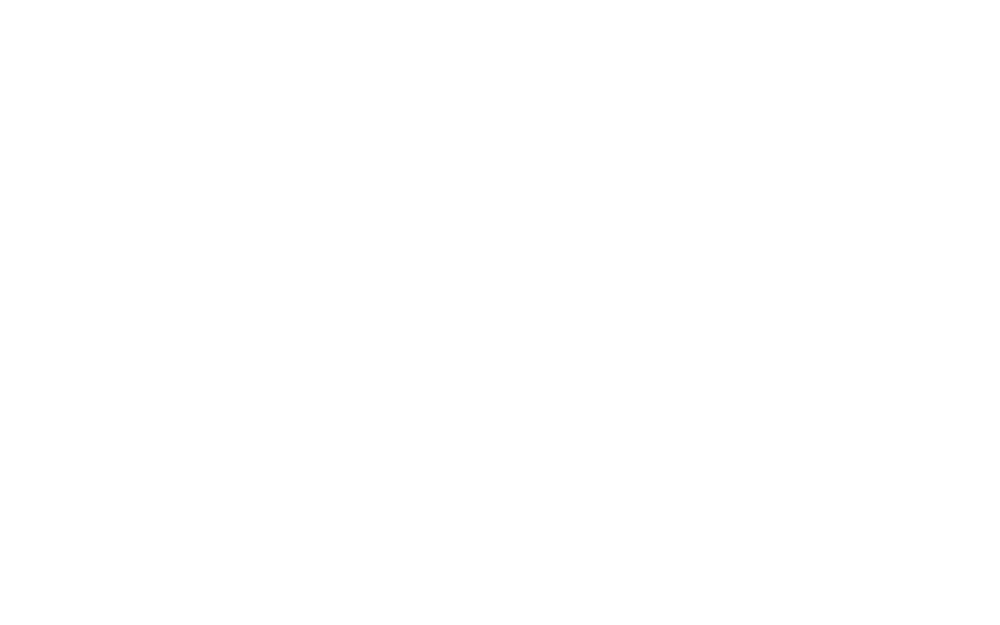 LOVELYFEST-Primary-Logo-White-thick.png