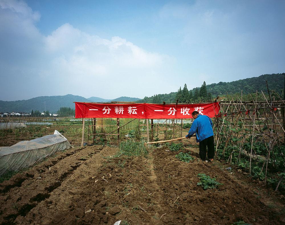 一分耕耘,一分收穫 No pain, no gain.  Chinese proverb   Lit.: Without plowing and weeding, there is no harvest.