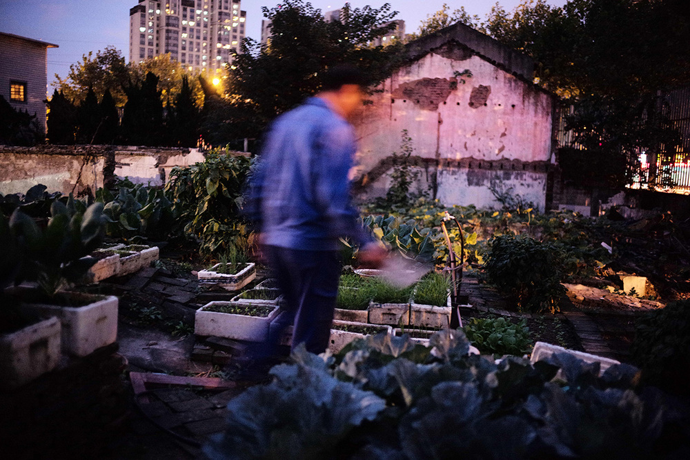 shanghai-autumn-leleu-11-01-2015.jpg