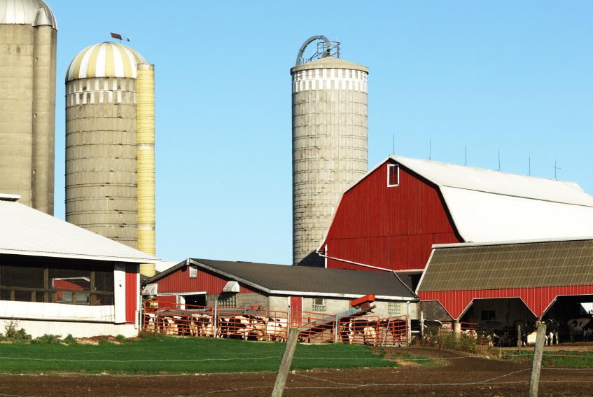 An actual farm with farmers...