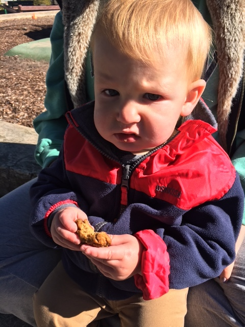 Declan, tommy's friend enjoying his gluten free healthy toddler friendly pumpkin cookies
