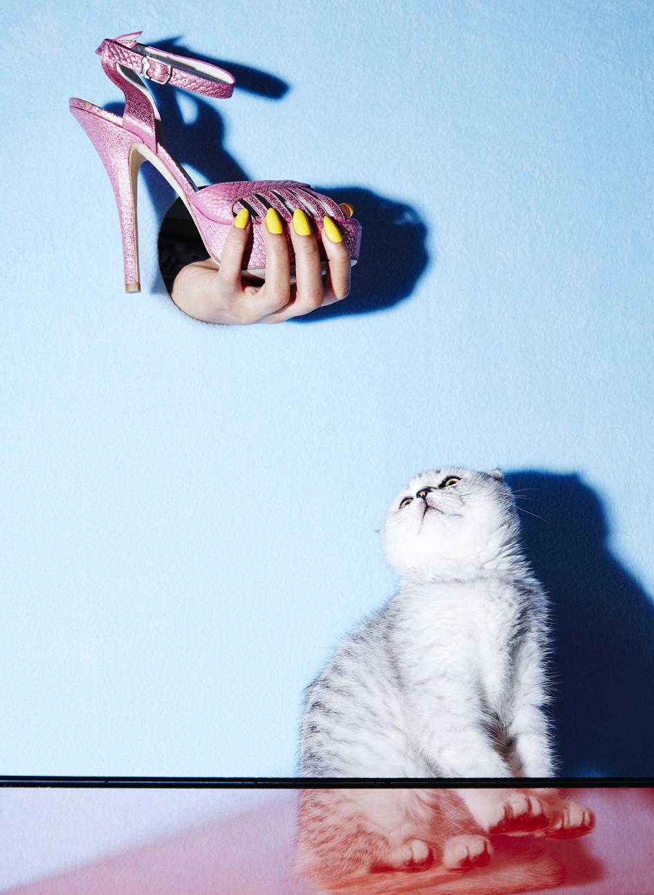 julia_kennedy_puss_puss_03.jpg