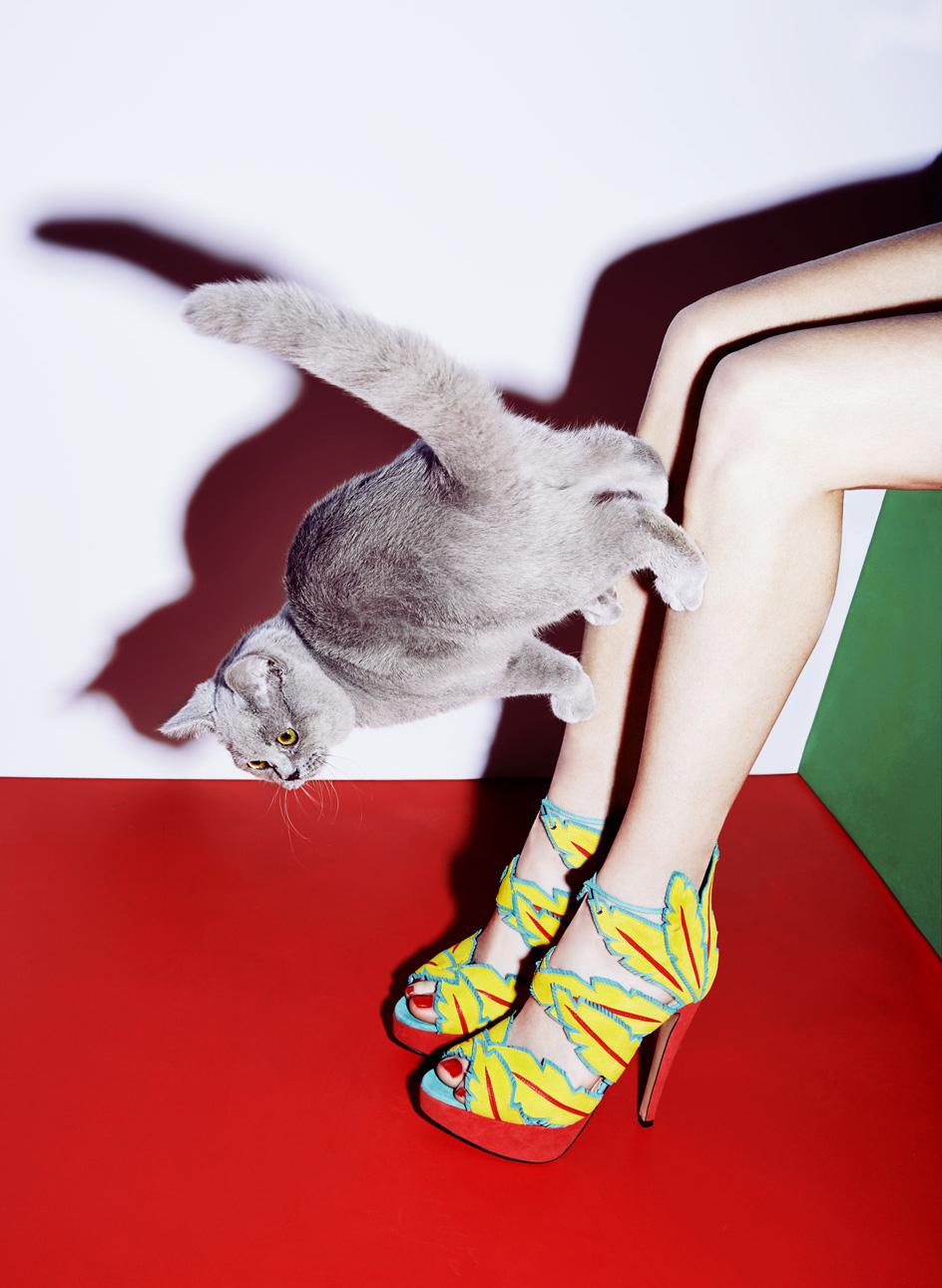 julia_kennedy_puss_puss_09a.jpg