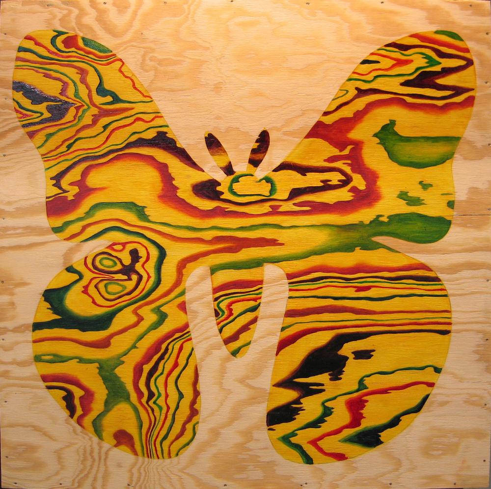 Moth, 2006